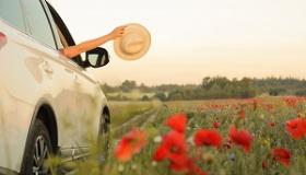wystajaca reka z kapeluszem z jadacego auta wsrod makow polnych